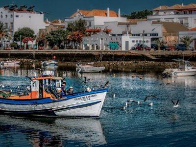 Fischerboot im Haen Portugals