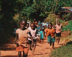 chamaeleon-reisen Gondwana