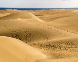 Sandduenen in Maspalomas auf Gran Canaria