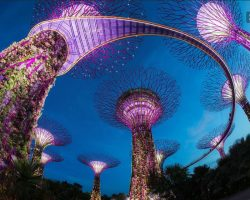 getyourguide singapore: singapur gardens by the bay